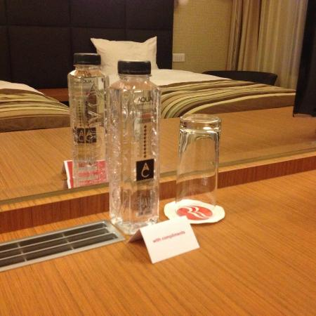 Ramada Oradea: In the room