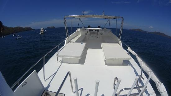 Single Fin Surf Charters: Top deck. Aft looking fore