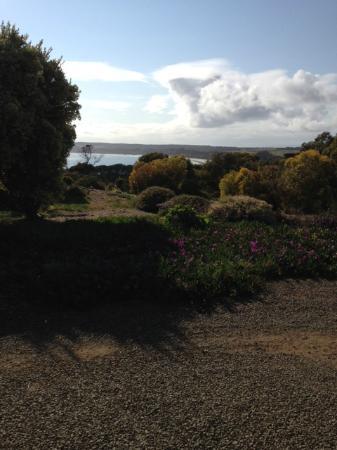 Emu Bay Holiday Homes: Il giardino dei cottage