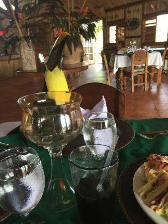 Hacienda del Mar: lunch with a Tucan