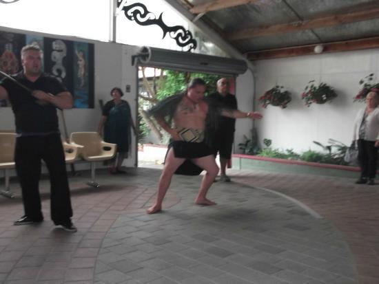 Waimarama Maori Tours : so called Maori dance