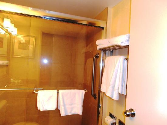 Holiday Inn Express Toronto - North York: The Bathroom