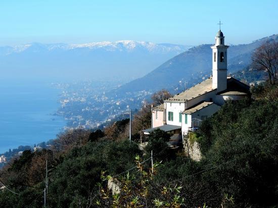 Trattoria Al Serraglio: Panorama di Sant'Apollinare vicino alla trattoria.
