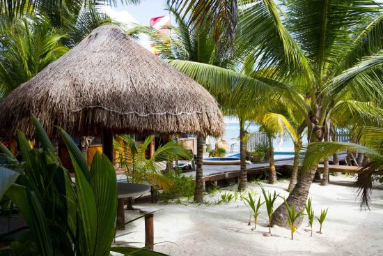 Puerto Morelos Diving Lodge : Diving Lodge