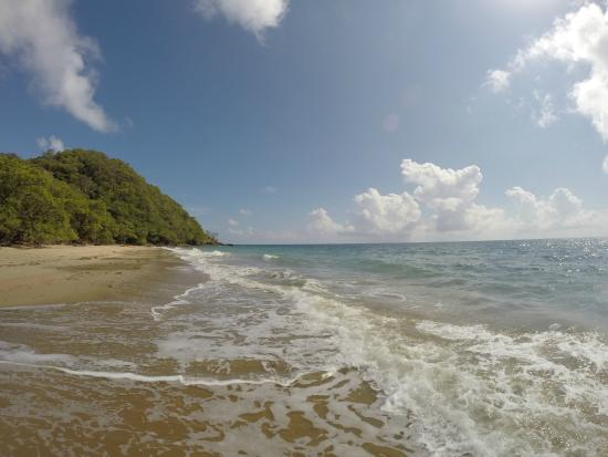 Tropical Sea Kayaks : Enjoying a deserted beach..