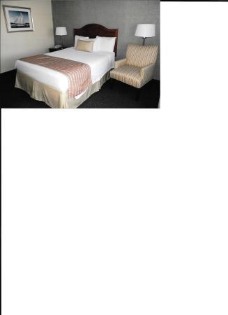 Pier 4 Hotel: handicap rm