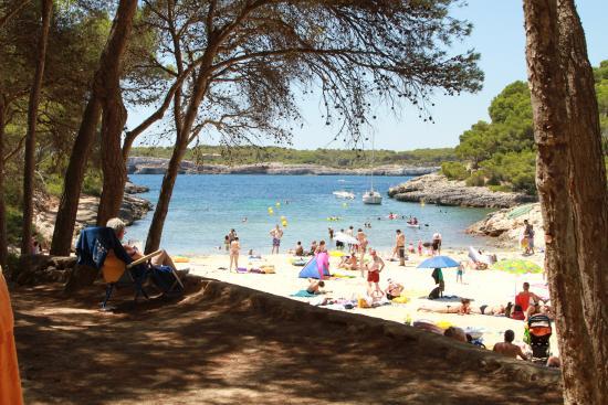 IBEROSTAR Club Cala Barca: La playa del hotel