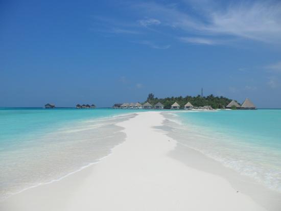 Gangehi Island Resort: Paradise