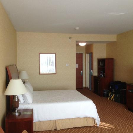 Hilton Garden Inn Ottawa Airport : Room 702