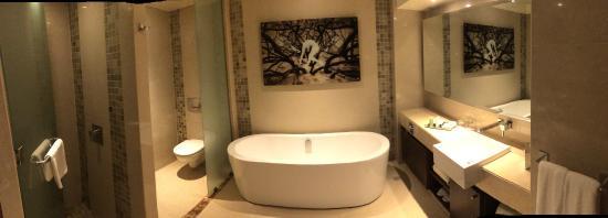 Hotel Monticello : Baño Habitación