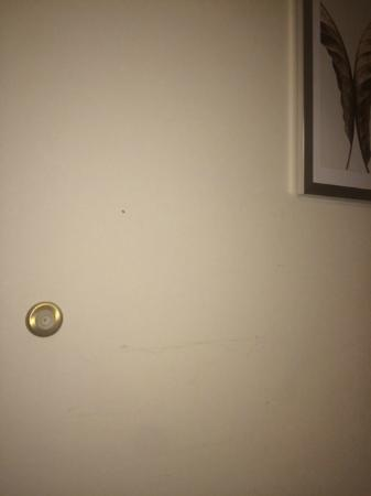 Comfort Suites University Area: Wall discoloration