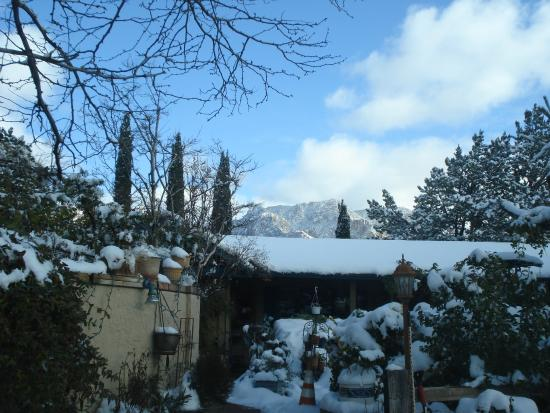 Rose Tree Inn: Under a Blanket of Snow
