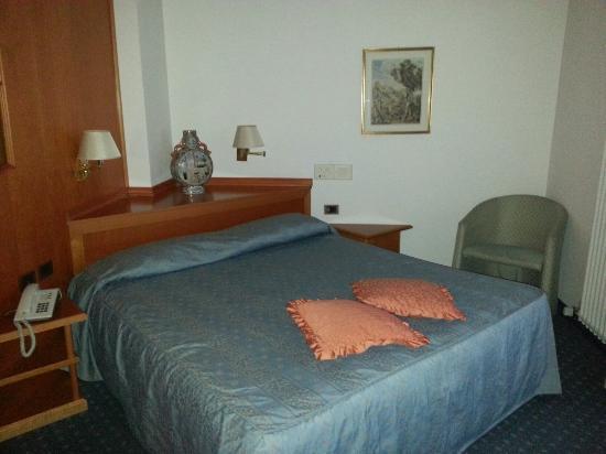 Park Hotel Iris: Stanza molto spaziosa. La foto non rende giustizia ma può dare un'idea.