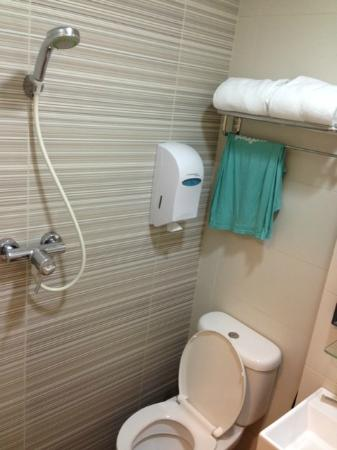 Value Hotel Nice: Toilet with shower