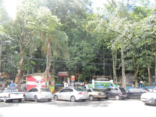 Bosque Estadual