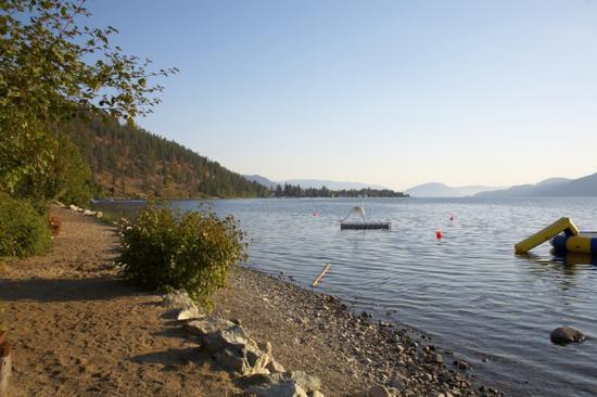 La Casa Cottage Resort: Swimming Area