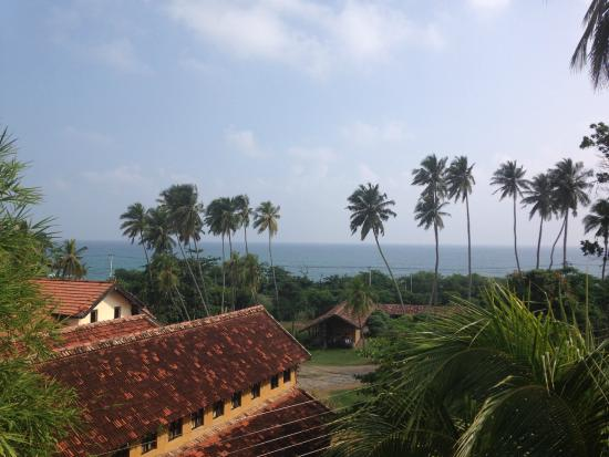 Summer Lodge Tangalle: View from the balcony