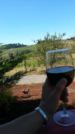 Silvan Ridge Winery : Solo trip