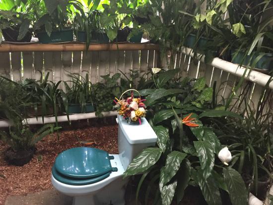 Valhalla Experimental Station: Outdoor toiler