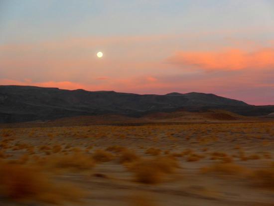 desert sunset death - photo #10