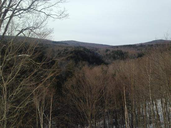 Duxbury, VT: Mt. view.