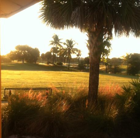 West Palm Beach Golf Course: Grass driving range at daybreak