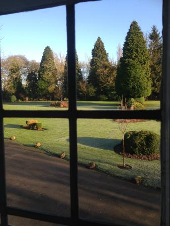 Nuthurst Grange Country House Hotel & Restaurant: Some of the grounds from the window.