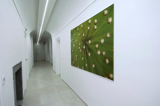 Galeria River : Hall & access corridor