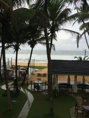 Suite Lanka: View from 1st floor on a rainy day