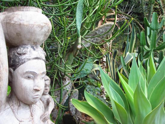 Vanga Guest House: Garden