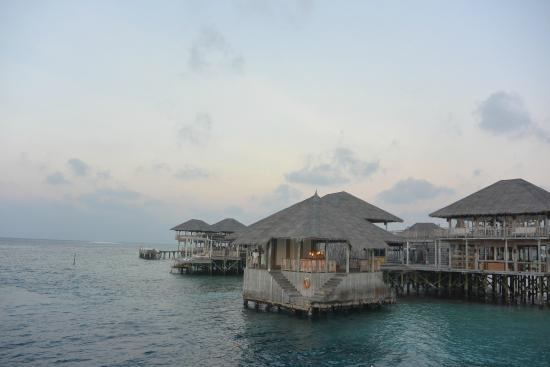 Olhuveli Island : Hotel Check-In
