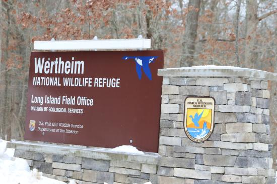 ‪Wertheim National Wildlife Refuge‬