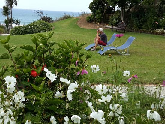 Kuaotunu Bay Lodge : beautiful garden