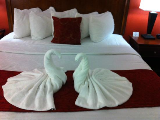 Best Western Plus Loveland Inn: Surprise white-towel swans on the suite bed.