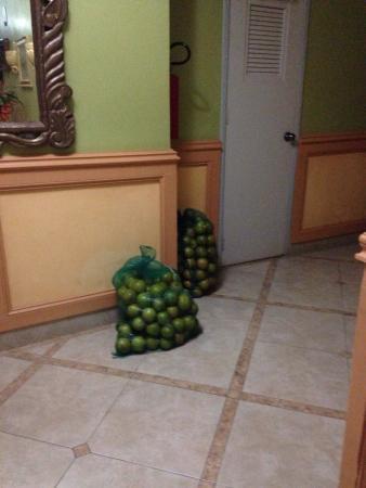 Villa Las Margaritas Plaza Cristal: Alimentos en el piso