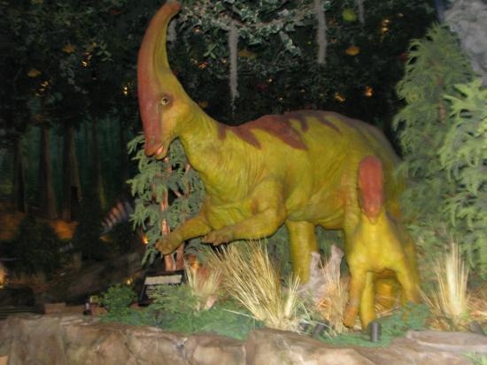 Trex foto de t rex orlando tripadvisor for T rex location