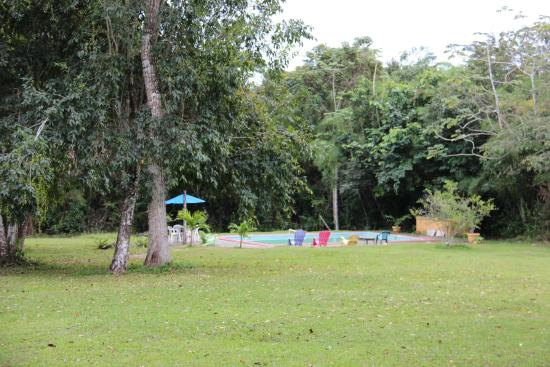 Howler Monkey Resort: view of the pool area