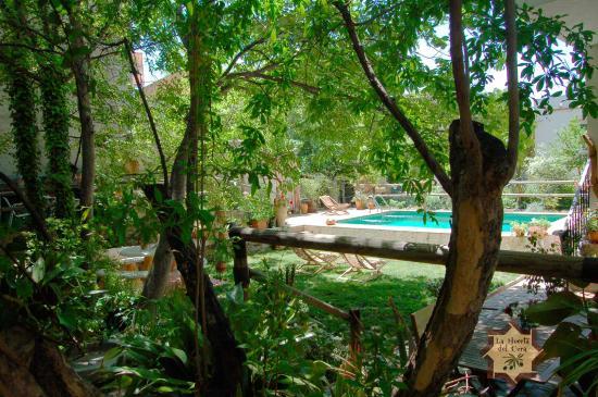 Jard n y piscina picture of la huerta del cura casa for Piscina jardin secreto