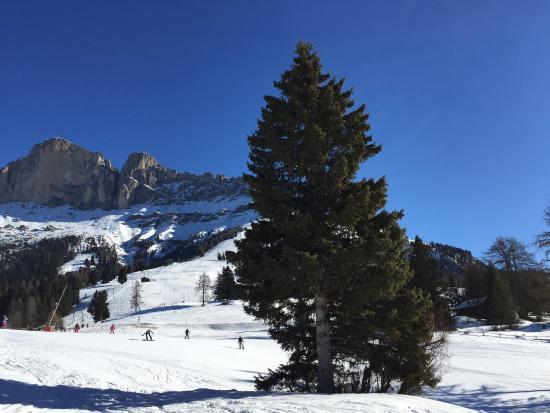 Carezza Ski: What do you imagine nicer?