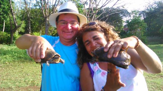 Laguna Big Pond: las tortugas d ela laguna