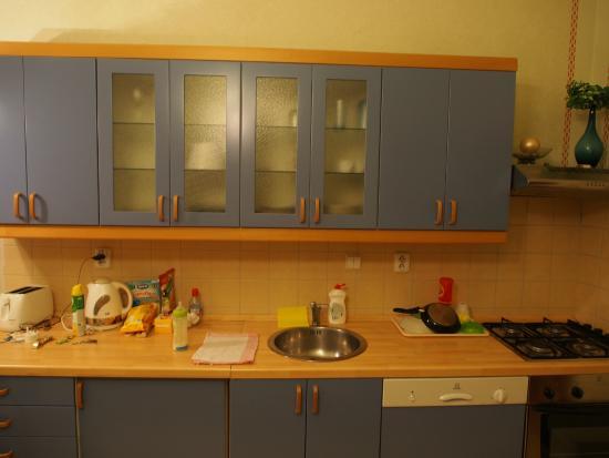 Karlova Apartments : Cozinha equipada