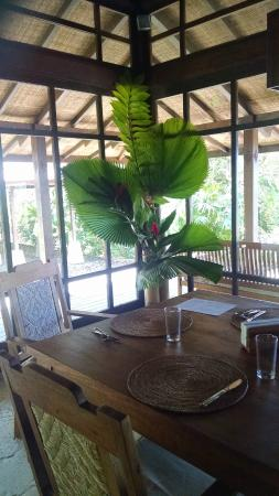 Manu Yoga Retreats: Dining room/main room