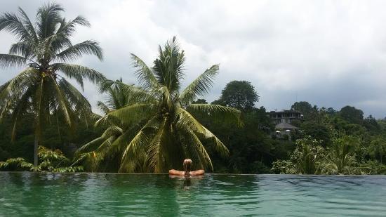 "Sunset Hill : Infinity ""jungle"" pool"
