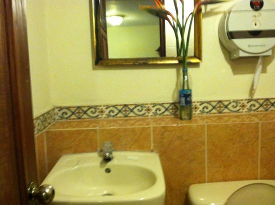 Hotel Villa Florencia Centro: Bathroom