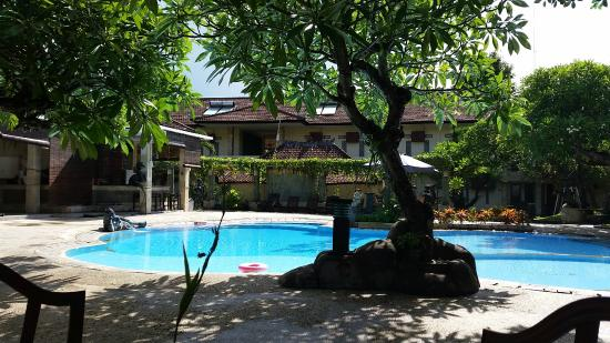 Melka Excelsior Dolphin & Wildlife Resort: Swimming pool