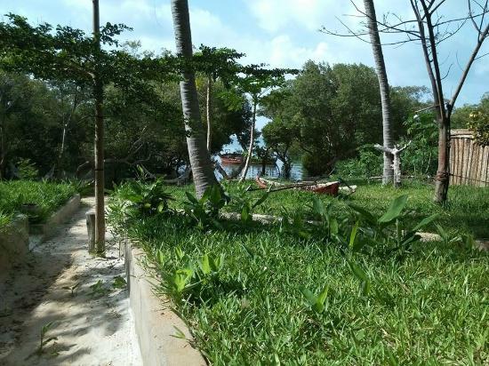 Mafia Beach Bungalows: Uitzicht bungalow