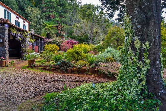 Casas Valleparaizo: Our gardens