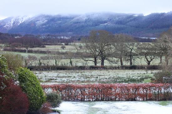 Little Orchard Bed and Breakfast: The view from our room