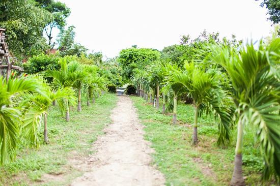 Hotel Hamacas: Nuestro Jardin