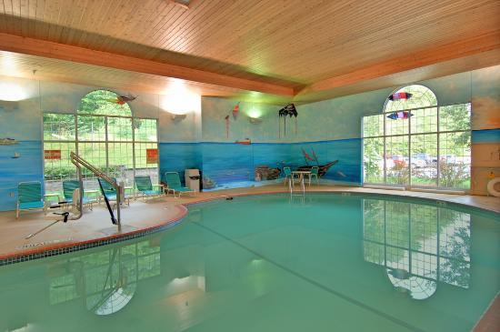 Comfort Suites Marquette: Pool Area